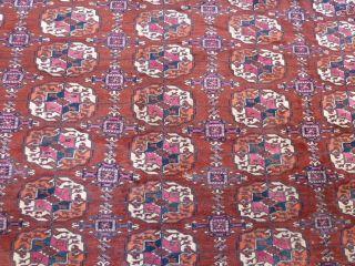 Antikerturkmenische Teke Teppich19jh Maße - 282 X266cm Bild