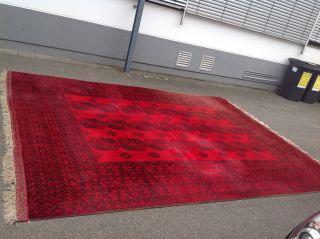 Antiker Ersari Teppich Aus Turkmenistan 428 X 313 Cm Antiker Teppich Tolle Größe Bild
