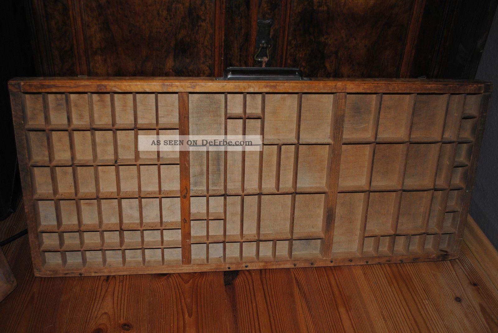 Sammelkasten Setzkasten Vitrine Holz Glas ~ Antiker Setzkasten Holz Massiv Regal Vitrine Sammelkasten Buchdrucker