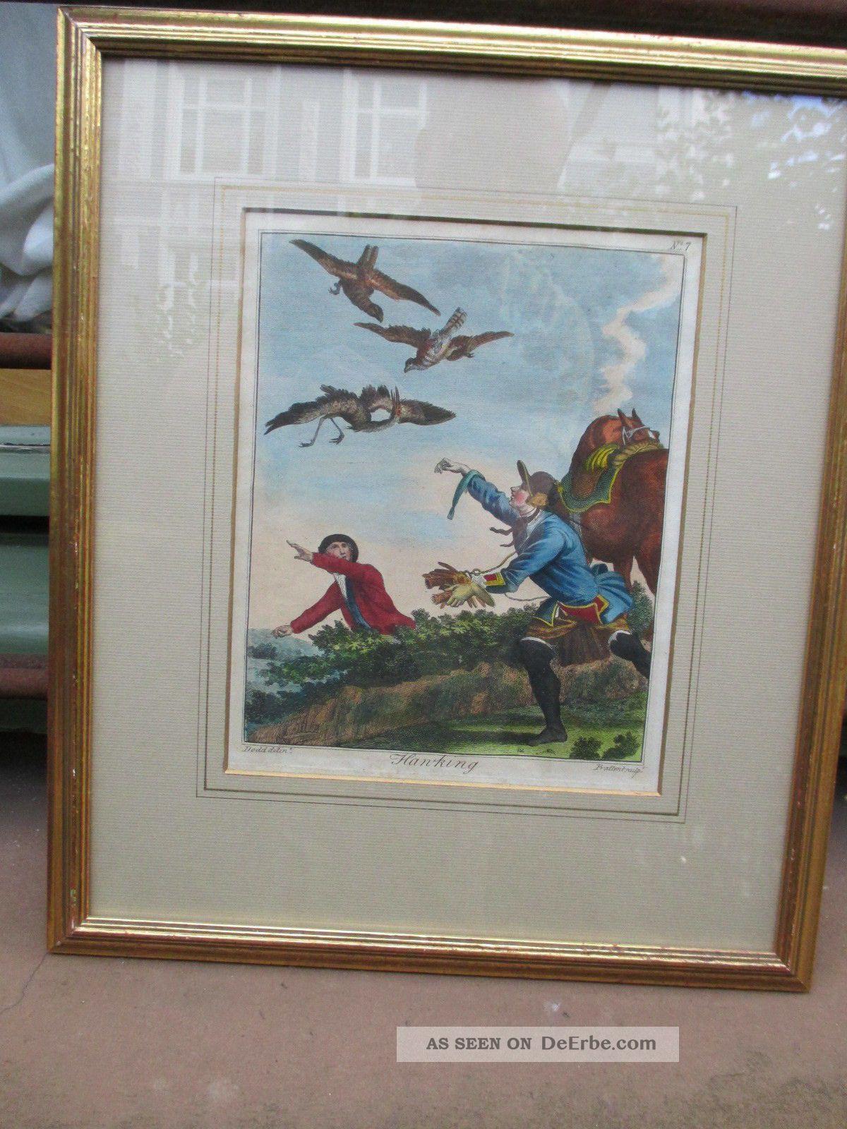 Die Falknerei Jagd Mit Falken,  Hawking Prattent Nach Dodd 1792 British Sportsman Grafik, Drucke Bild
