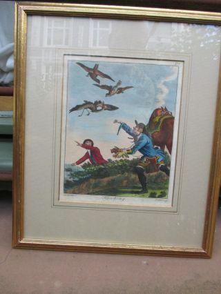 Die Falknerei Jagd Mit Falken,  Hawking Prattent Nach Dodd 1792 British Sportsman Bild