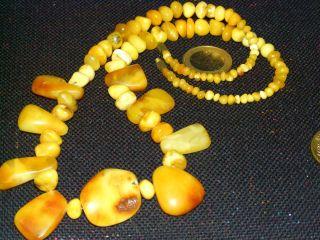 Bernstein Kette Oliven Amber Necklace 28 Gra Bild