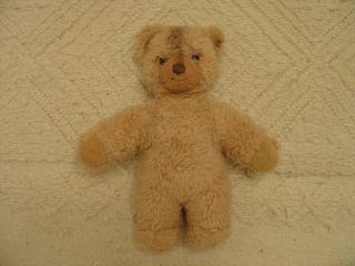 Konvolut Alte Steiff Tiere 9 Teile Ab 1968 Inkl 30 Cm Teddy Aus Den 1970er Bild