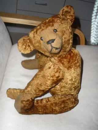 Alter Teddybär Hart Gestopfter Teddybär 42 Cm Bild