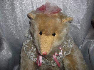 Schöner Großer Teddy Bär Ca 60 Cm England Canterbury Bears Limitierte Edition Bild