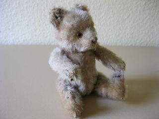 Alter Mohair Teddy Mit Druckstimme Bär Teddybär Vintage Bild