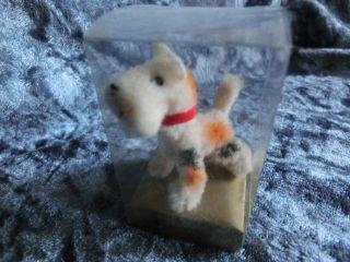 Kleine Ara Wollminiatur Hund Terrier 4,  5 Cm I.  Verpackung Bild