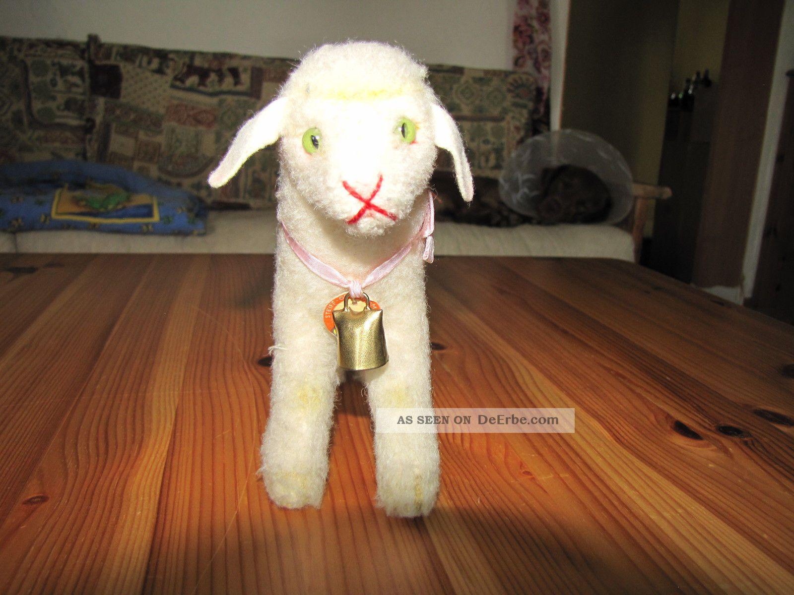 altes steiff l mmchen lamby mit b renschild u glocke. Black Bedroom Furniture Sets. Home Design Ideas