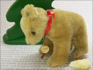 Hermann Alter Kleiner BÄr BraunbÄr Old Small Brown Bear With Id Button Grizzly Bild