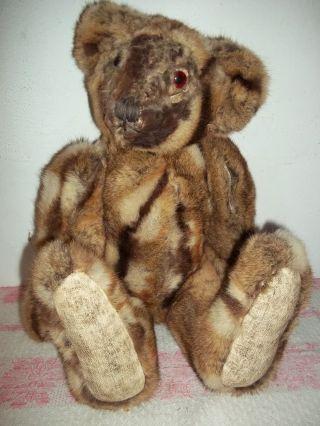 Alter Pelzteddybär - Bär - Teddy - Holzwolle,  Echt Pelz - Fell 50cm - Um 1960 Bild