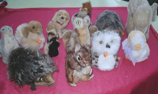 12 ältere Steiff Tiere Konvolut Aus Sammlungsauflösung Bild