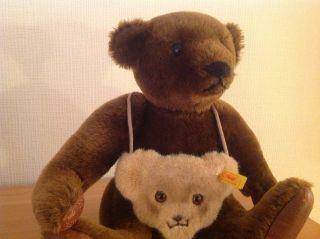 Großer Brauner Steiff Teddy Mit Umhängetasche Bild