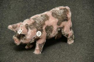 Steiff - Schwein,  Replica 1995 Bild