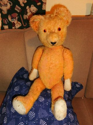 Alter TeddybÄr Teddy 59 Cm,  Gelber Mohair Holzwolle Gestopft Bild