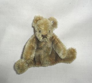 Alter Kleiner Steiff Teddy Bär Mit Knopf Für Die Puppenstube Bild
