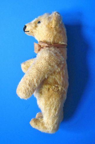 Seltener Steiff Vorkriegs Teddy 14 Cm Bild