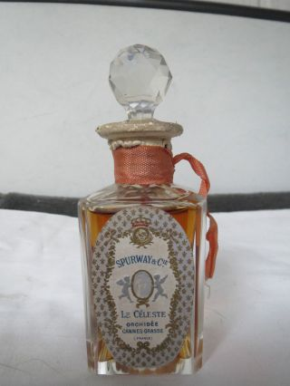 Seltener Orig.  Jugendstil - Parfumflakon Um 1900 Mit Originalfüllung Bild