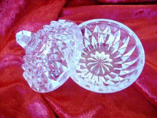 Zuckerdöschen Pillendose Süsstoff Glas Motiv Kanne Glas Gewürzdose Bild