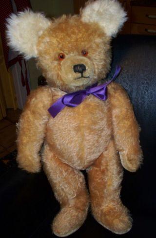 Schöner Alter Diem Teddybär 60/70er J.  Holzwollgestopft, Bild