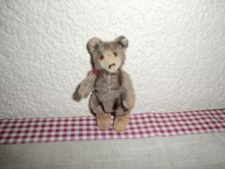 Kleines Steiff Vorkriegs - Teddy Baby Mit Altem Knopf,  Ca.  9cm Bild