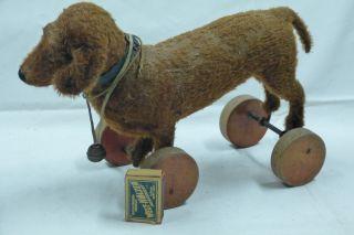 Ziehund Auf Holzrädern Steiff Bild