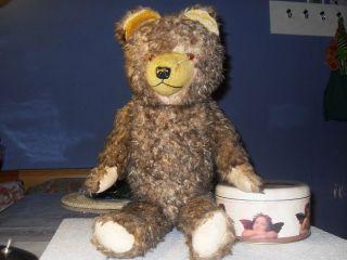 Alter Teddybär 62 Cm,  Holzfüllung Und Glasaugen,