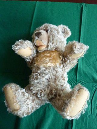 Steiff Teddybär 45 Cm. Bild