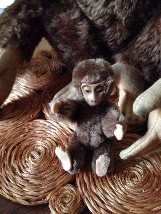 Schuco Alter Affe, Bild