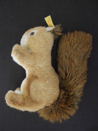 F34) Steiff Tier Ricky Eichhörnchen Kinder Spielzeug Bespielt Mit Knopf Im Ohr Bild