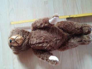 Teddy Alt BÄr TeddybÄr Bild