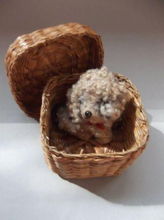 Altes Spielzeug Hund Mit Korb Plüschtier Stofftier Plush Dog With Basket Bild