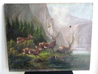 Black Forest Jagd Hunter Hirsch Öl Auf Leinen Bild Cervo Deer 19.  Jhdt.  Antlers Bild