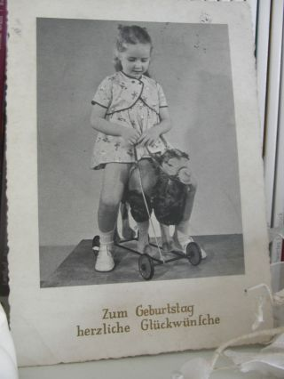 Ak Spielzeug Kleines Mädchen 1958 Steiff Rolltier Sitztier Kamel Auf Rädern Bild