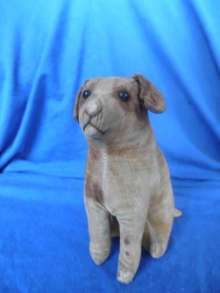 Seltener Hund Aus Samt Steiff Alt Vorkrieg Bild