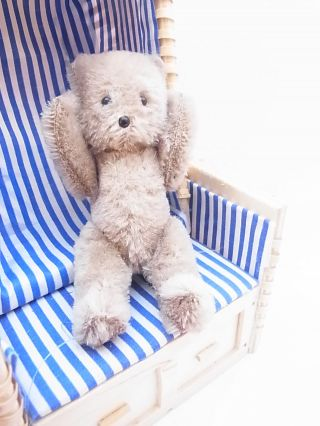 Kleiner Alter Flachschnauzen - Bär Mohair Teddy Bear Teddybär Schuco ? 12 Cm Bild