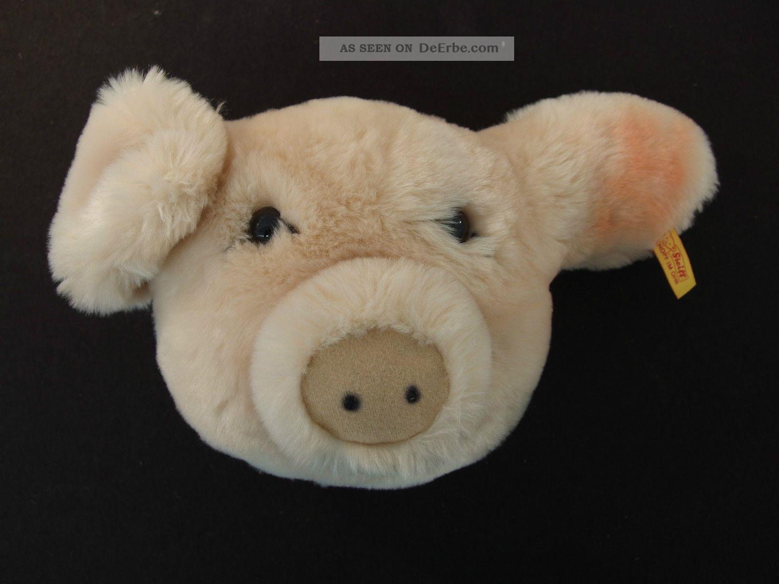 B86) Steiff Tier Schwein Sammler Knopf Im Ohr Bespielt Kind Tiere Bild