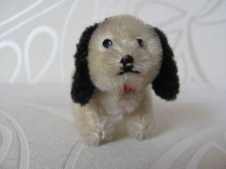 Schuco Tiere Arche Noah Hund Dalmatiner Miniatur 5 Cm Schwarz Weiss Alt Dog Arc Bild
