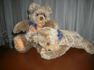 Zwei Steiff - Teddybären - 39cm Zotty U.  Großer 32cm Floppy - Zotty M.  Rassel - 60ziger Bild