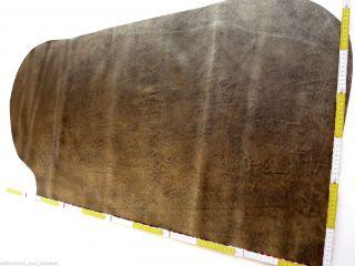 Lederhaut Gold Antik 115x65 Vintage Style Blankleder Kuh Fell Sattel Büffel Rind Bild