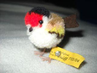Toller Tadelloser Wollvogel Mit Knopf Und Fahne Von Steiff 4 Cm Bild