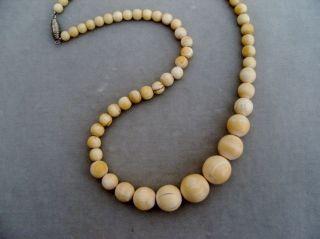 Antike Bein Perlen Kette Halskette Collier Verlauf Gefadelt Bild