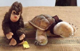 Alte Steiff Schildkröte Slo Mit Knopf Und Kleiner Alter Affe Mit Knopf / Fahne Bild