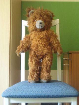 Viele Fotos WeihnachtsraritÄt Ddr Teddy,  Braun (ca.  62 Cm Groß) M.  Stimme Bild