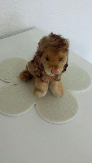 Steiff Kleiner Löwe Antik Bild