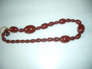 Cherry Bernstein Oliven Rot 18cm 38gr Bild