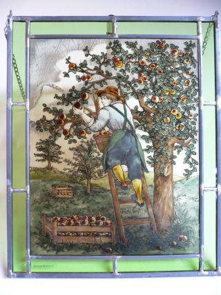 Fensterbild Bleiverglasung Obsternte Von Bernhardt,  Deco,  Glasmalerei Bild