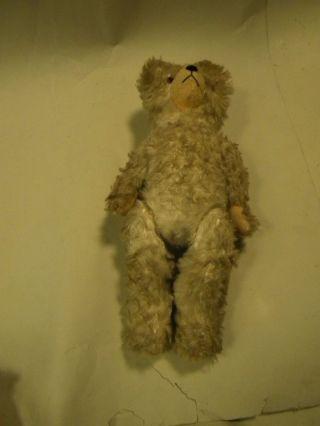 Alter Teddy Bär Eventuell Für Bastler Länge 45 Cm Weiss Bild