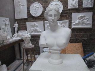 Gips BÜste Skulptur Figur Aphrodite SchÖn Deko Bild