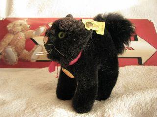 Steiff Burri Kater - Burri Tom Cat Nr.  1496,  10 Mit Kfs Bild