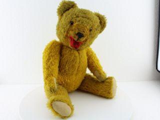 Sammlerstück Teddy - Sehr Schöner Alter Teddybär Mit Brummstimme,  Ca.  40cm Bild